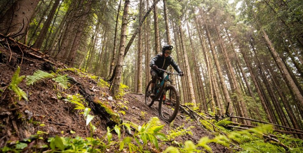 the pleney mountain bike trails in morzine are world class