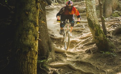 Mountain Biking Morzine - Riding Roots