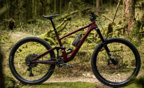 Specialized Enduro for Hire