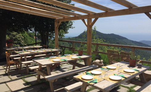 Osteria with a view in Finale Ligure - MTB Beds