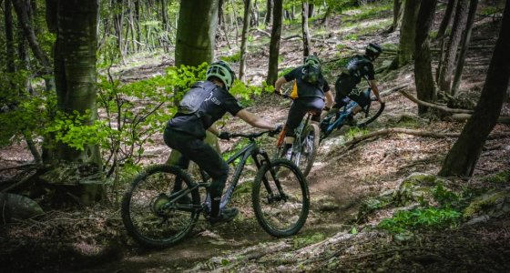 Finale Ligure exclusive mtb tours with MTB Beds