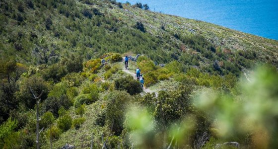 Enduro world series trails in Finale Ligure with mtb beds tours